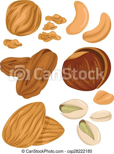 Types of Nuts - csp28222180