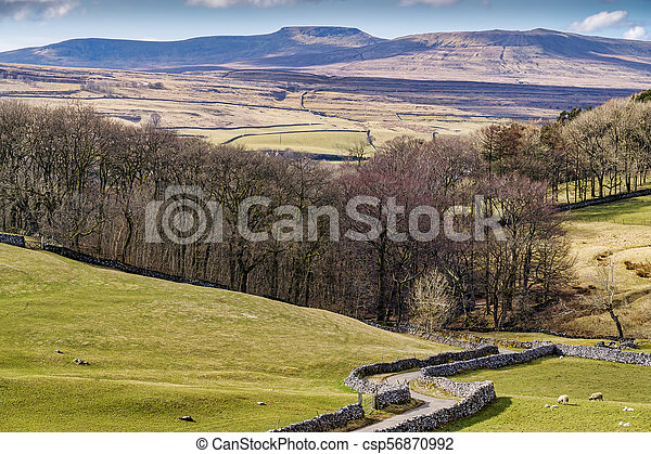Typical Yorkshire Dales scenery with rolling hills and a country - csp56870992