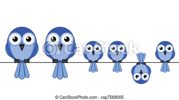 uccello, famiglia - csp7568005