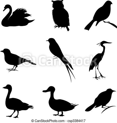 uccello - csp3384417
