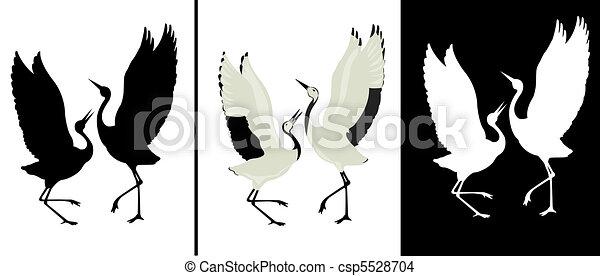 uccello - csp5528704