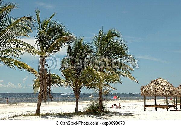 La playa no llena - csp0093070