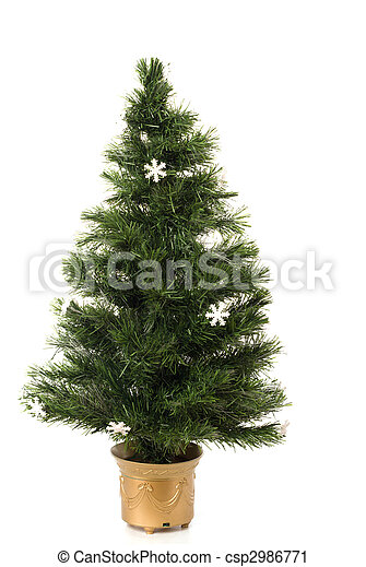 Undecorated Christmas tree - csp2986771