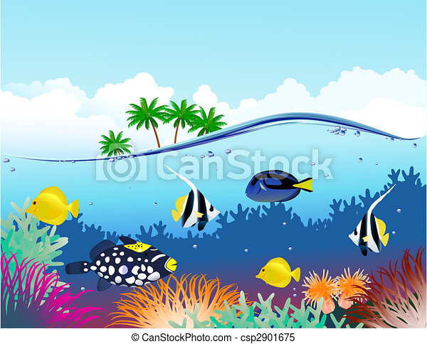 Under water life - csp2901675