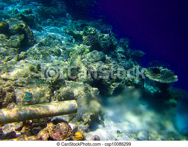 under water world at Maldives - csp10086299