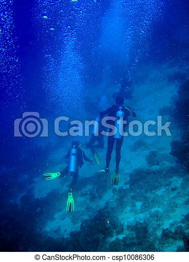 under water world at Maldives - csp10086306
