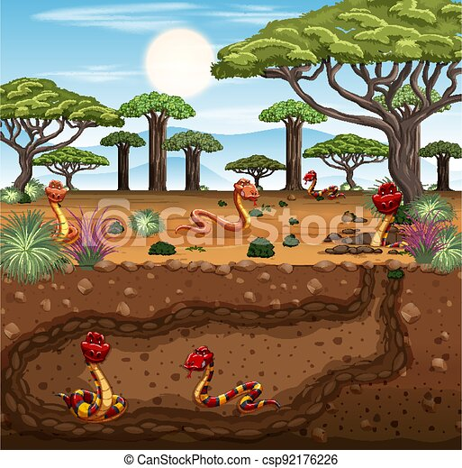 Underground animal burrow with snake family - csp92176226