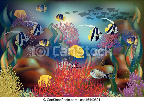 Underwater background tropical fish vector illustration underwater background tropical fish vector illustration freerunsca Gallery