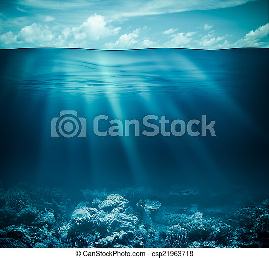 Underwater coral reef seabed and water surface with sky - csp21963718