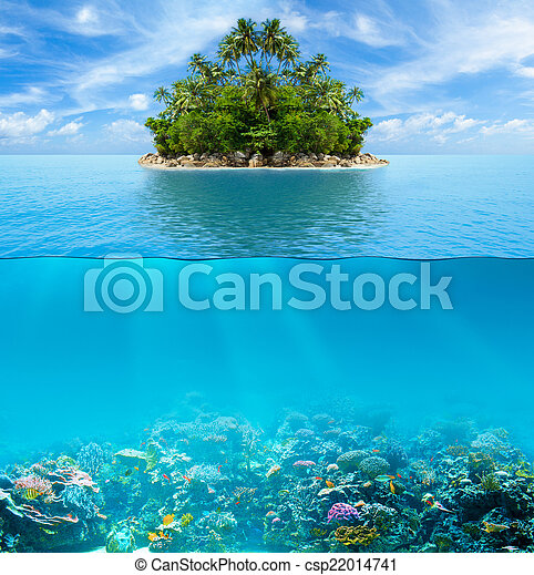 Underwater coral reef seabed and water surface with tropical isl - csp22014741
