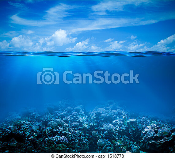 Underwater coral reef seabed view with horizon and water surface split by waterline - csp11518778