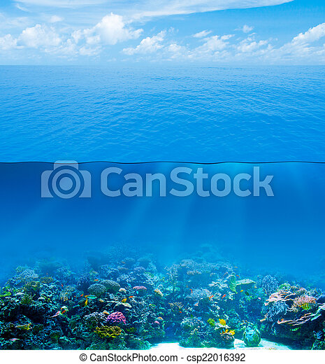 Underwater deep with water surface and sky - csp22016392
