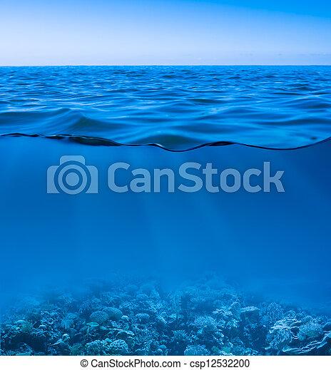 underwater, freier himmel, oberfläche, entdeckt, gelassen, meerwasser, welt, noch - csp12532200