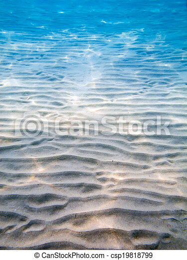 underwater landscape - csp19818799