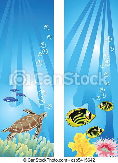 Underwater Scene - csp5415642