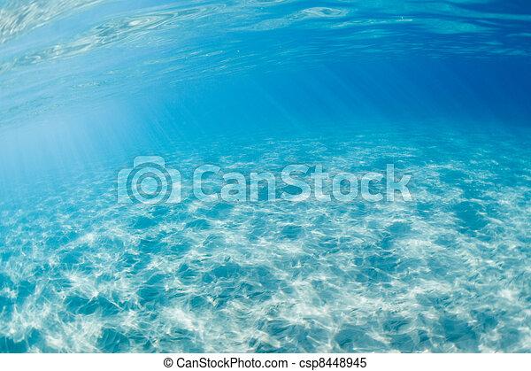 Underwater - csp8448945