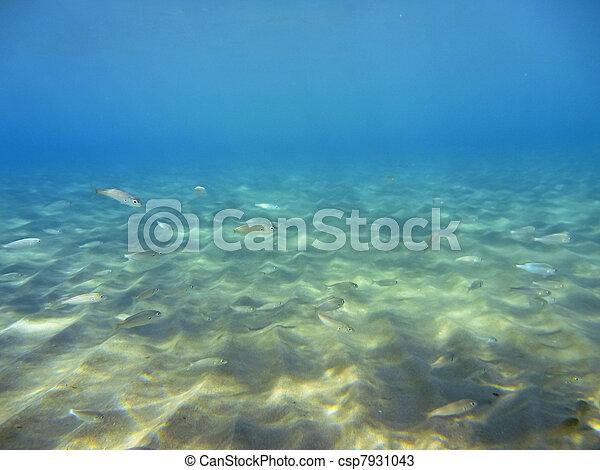 Underwater - csp7931043