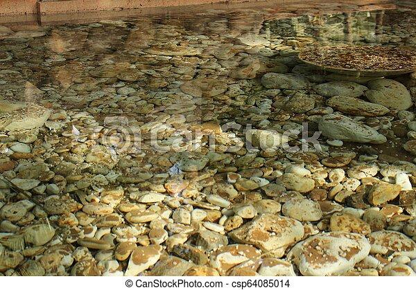 Underwater stones in the garden - csp64085014