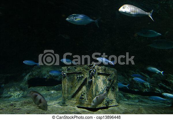 underwater treasure underwater treasure chest box site on the sea