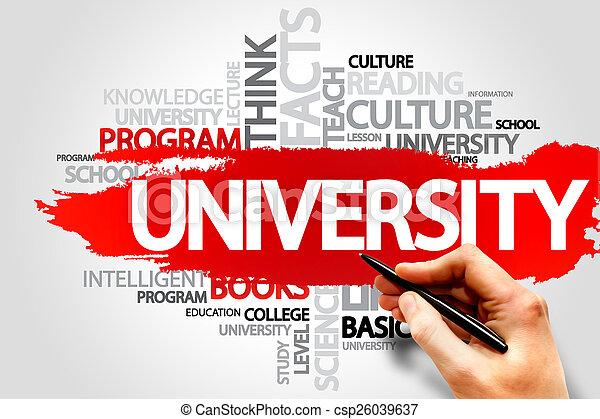UNIVERSITY - csp26039637