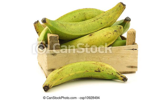 unripe baking bananas - csp10928494