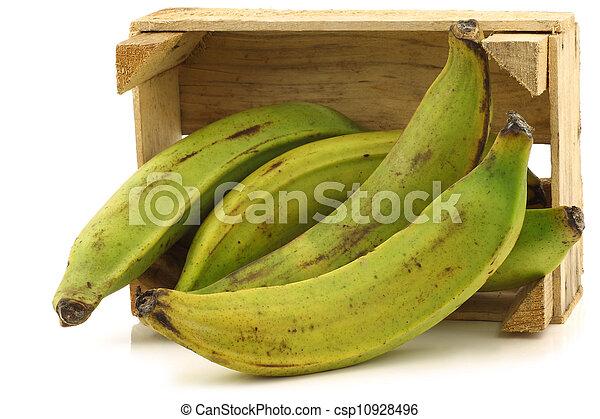 unripe baking bananas - csp10928496