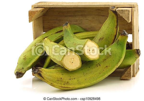 unripe baking bananas - csp10928498