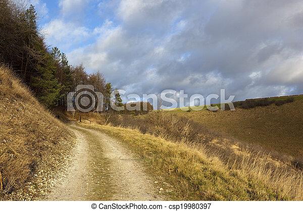 upland bridleway - csp19980397