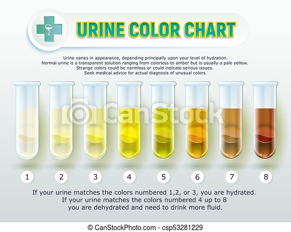 Urine Color Chart 1 Vector Illustration Of A Visual Poster Urine