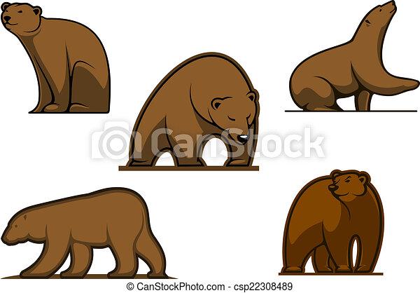 urso marrom colorido caráteres marrom fauna colorido isolado