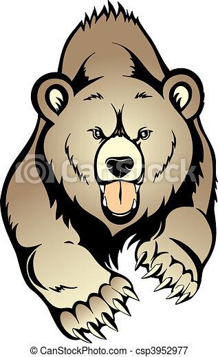 urso pardo marrom isolado urso fundo selvagem branca