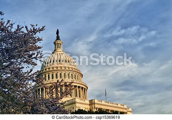 US Capitol Dome - csp15369619