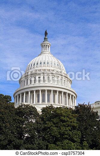 US Capitol Dome - csp3757304