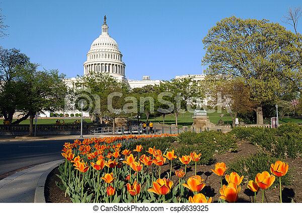 US Capitol - csp6639325