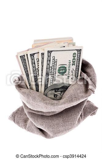 U.S. dollars bills in a sack - csp3914424