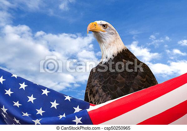 US flag border with eagle on blue sky background - csp50250965