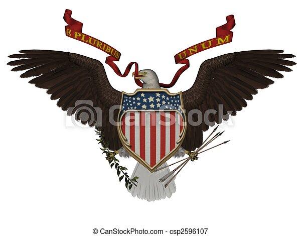 US symbol - csp2596107