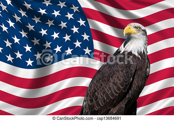 Usa Flag With Bald Eagle Patriotic Symbol Showing The American Flag