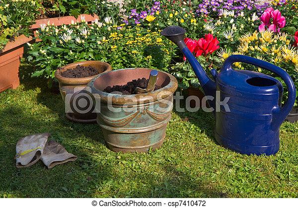 Usines, automne, pots fleurs, jardin, nouveau. Usines, planter ...