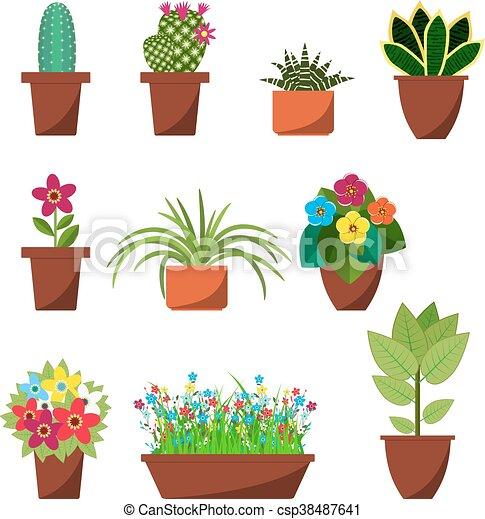 Usines Maison Decoration Interieur Fleurs