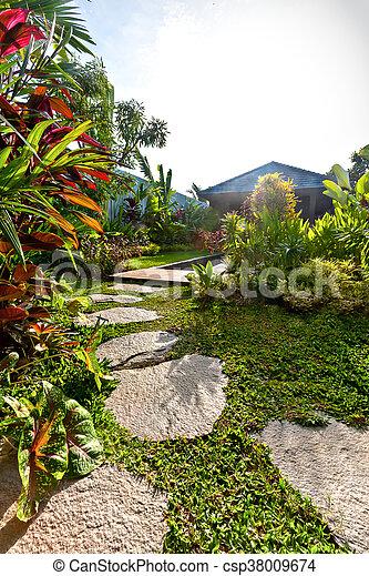 usines, pelouse, jardin, maison, moderne, rempli