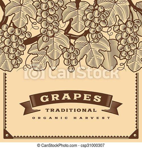 uva, marrone, raccogliere, retro, scheda - csp31000307