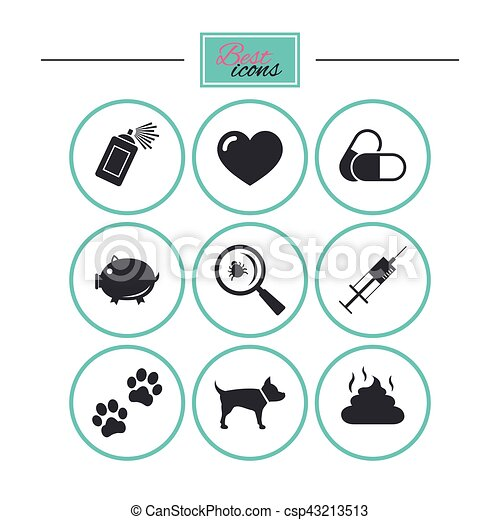 vétérinaire, chien, icons., pattes, animaux familiers, seringue, signs. - csp43213513