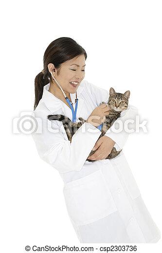 vétérinaire - csp2303736