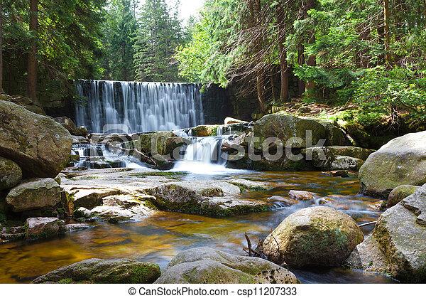 vízesés, erdő, folyik - csp11207333