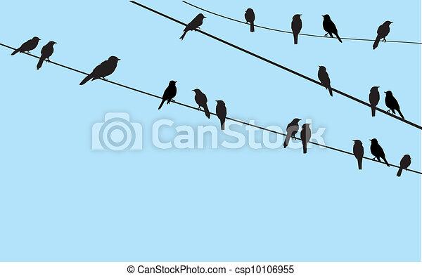 vögel - csp10106955