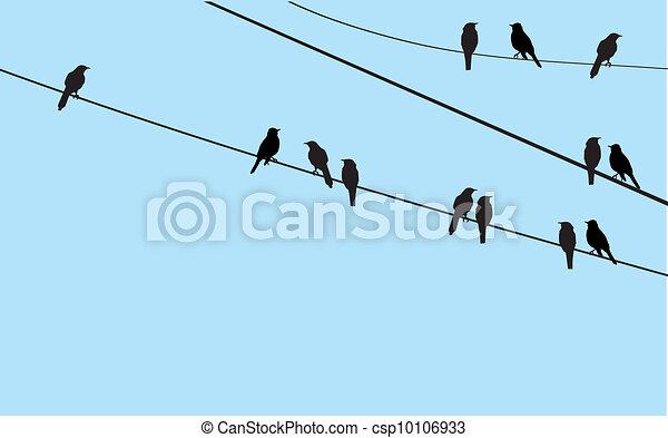 vögel - csp10106933