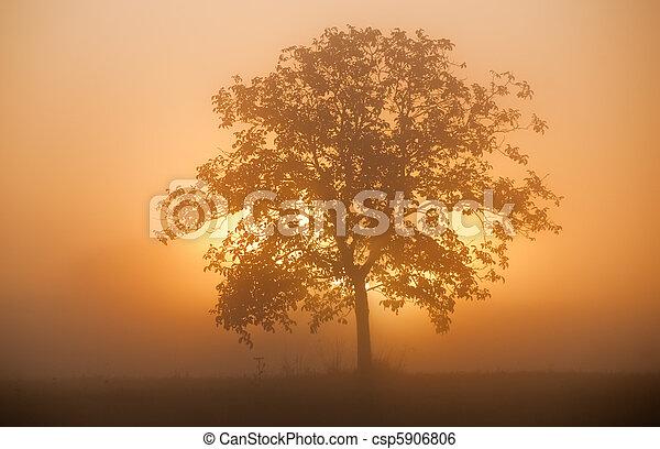 východ slunce - csp5906806