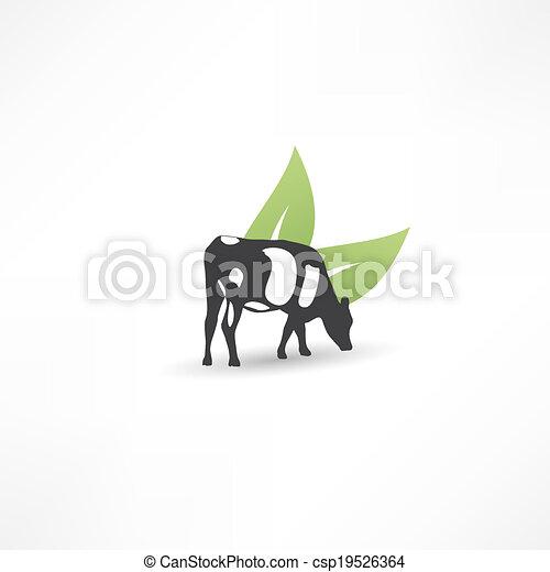 Vaca - csp19526364