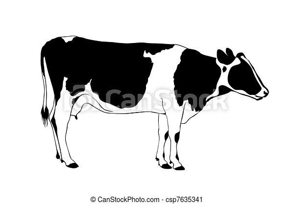 Vaca - csp7635341
